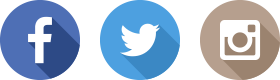 t3-2015-icon-social